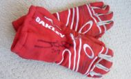 Bid on Justin Wilson's race-worn gloves to help us raise donations for the Dyslexia Institute of Indiana