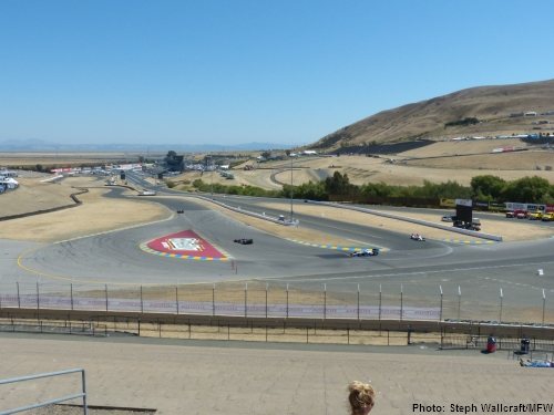 The view from the top of the turn 7 terrace at Sonoma Raceway.
